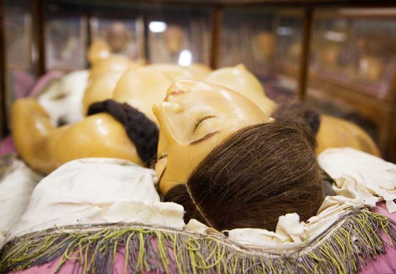 Венера Медичи из мастерской Клементе Сусини в La Specola, во Флоренции, Италия (1780-82). Предоставлено Музеем естественной истории Флоренции. Фото © Джоанна Эбенштейн.