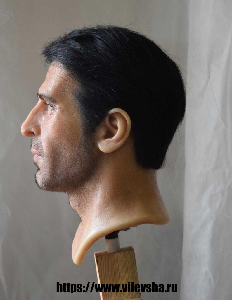 Buffon, head for a wax figure