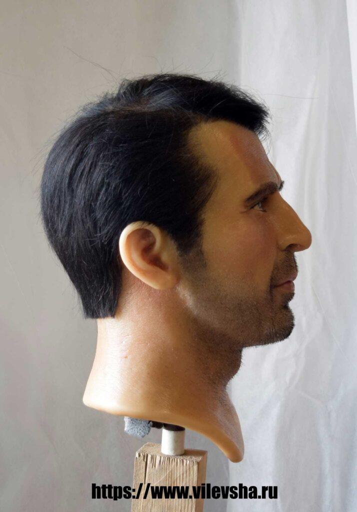 Head for Buffon wax figure